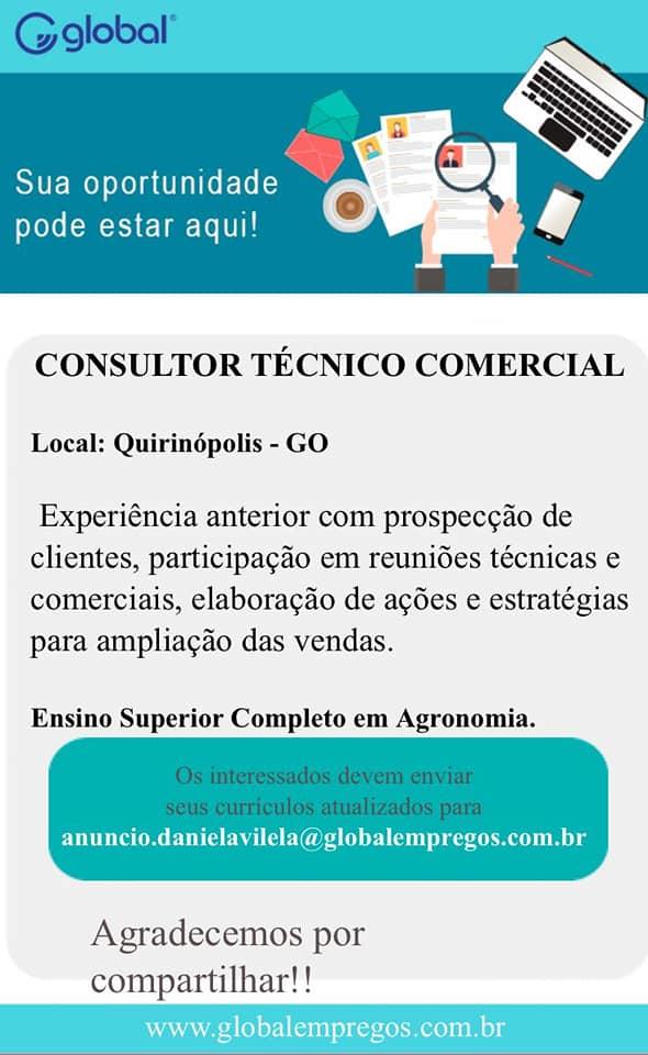 CONSULTOR TECNICO COMERCIAL
